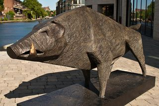 Terence Coventry, Boar II, photo by Davide Simonetti; see more of his photographs at http://www.flickr.com/photos/davidesimonetti/3598941147/